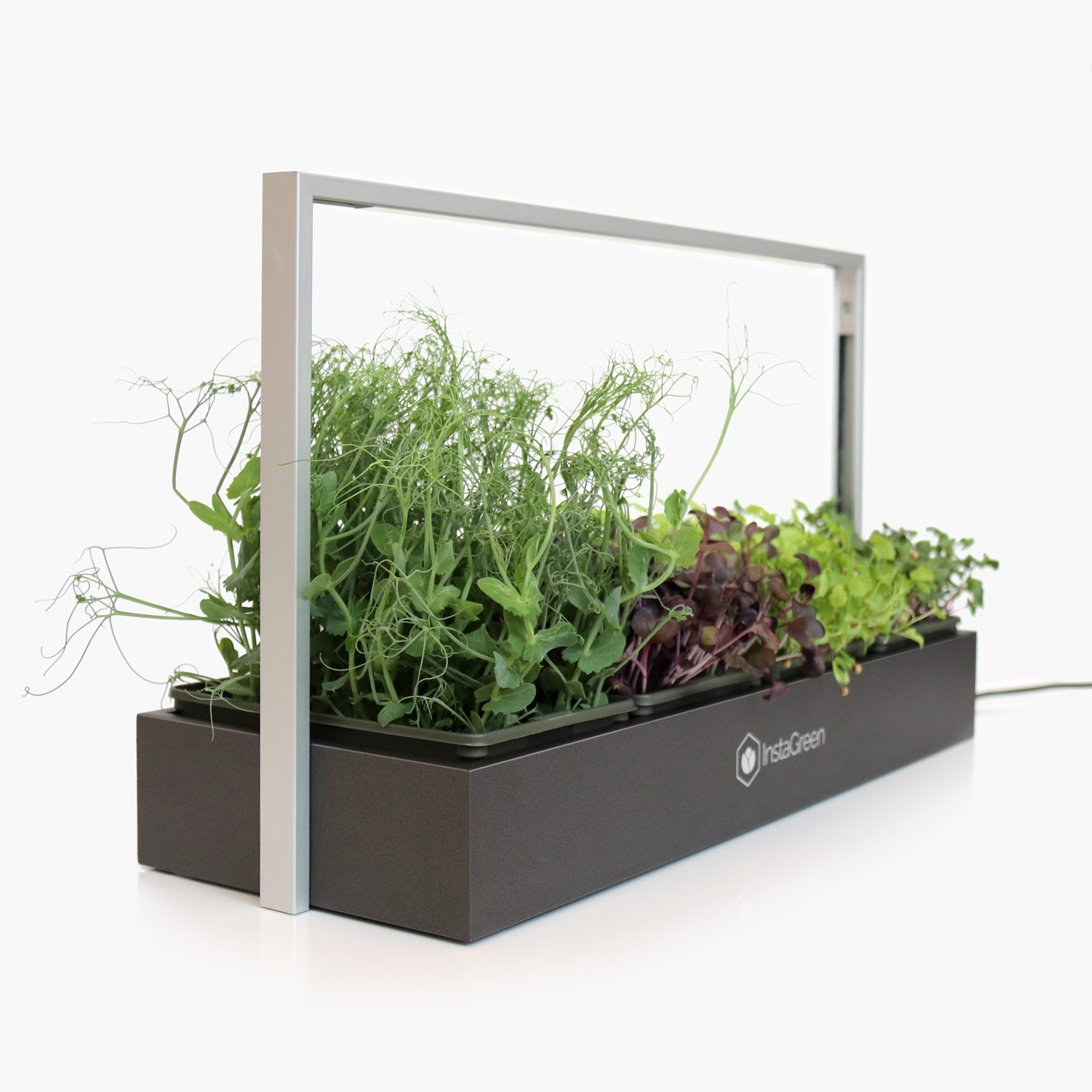 Microgreen LED display - dark aluminium