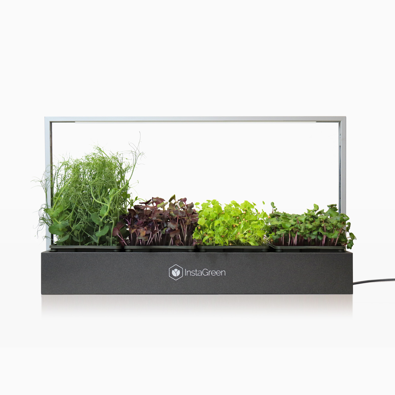 InstaGreen microgreen LED display dark aluminium filled with healthy microgreens