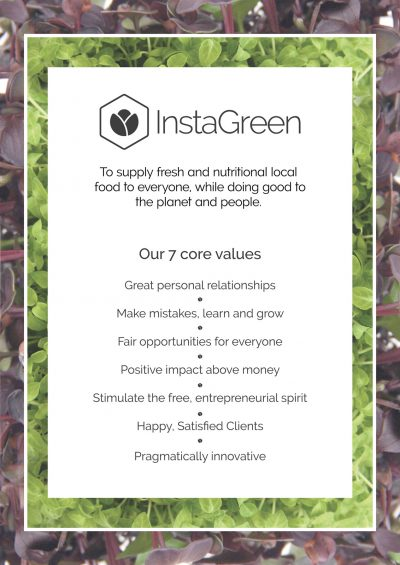 InstaGreen core values