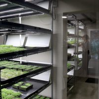 InstaGreenHouse growing space with multiple cultivation systems
