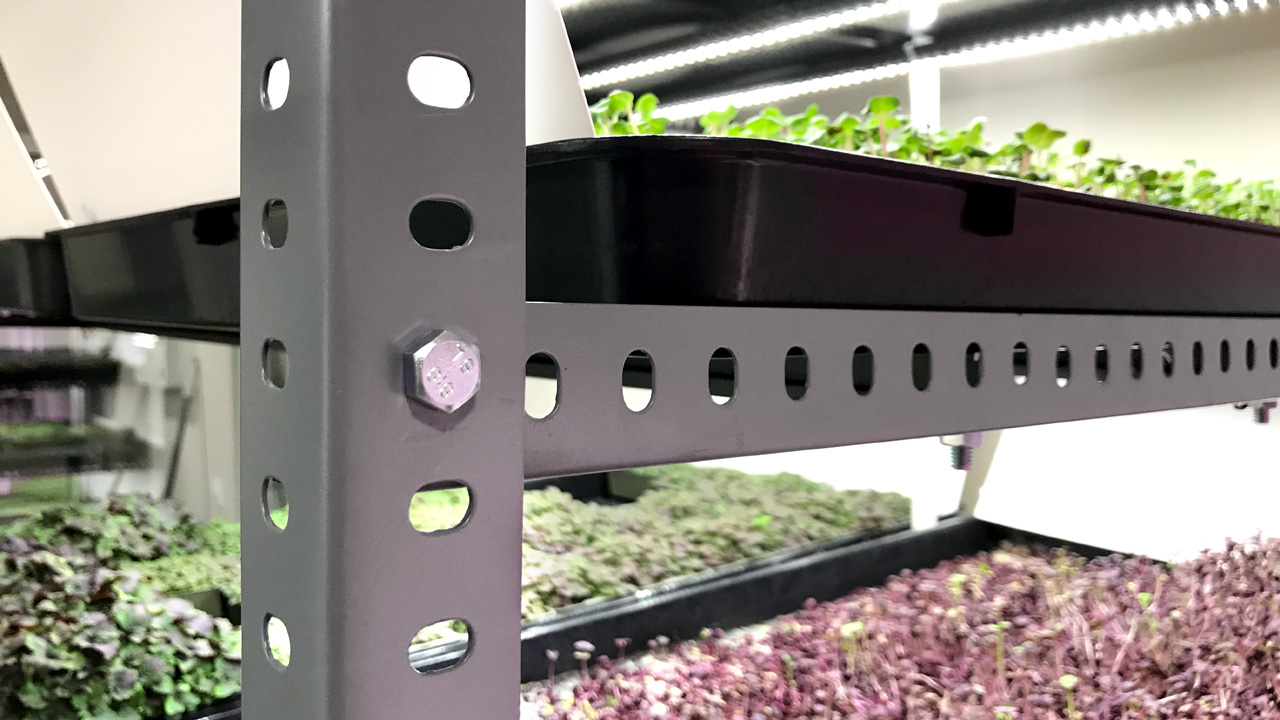 Adaptability and scalability ensured with the InstaGreen cultivation systems