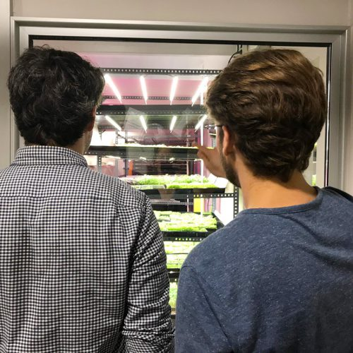 Showing potential clients around in the InstaGreenHouse in Barcelona