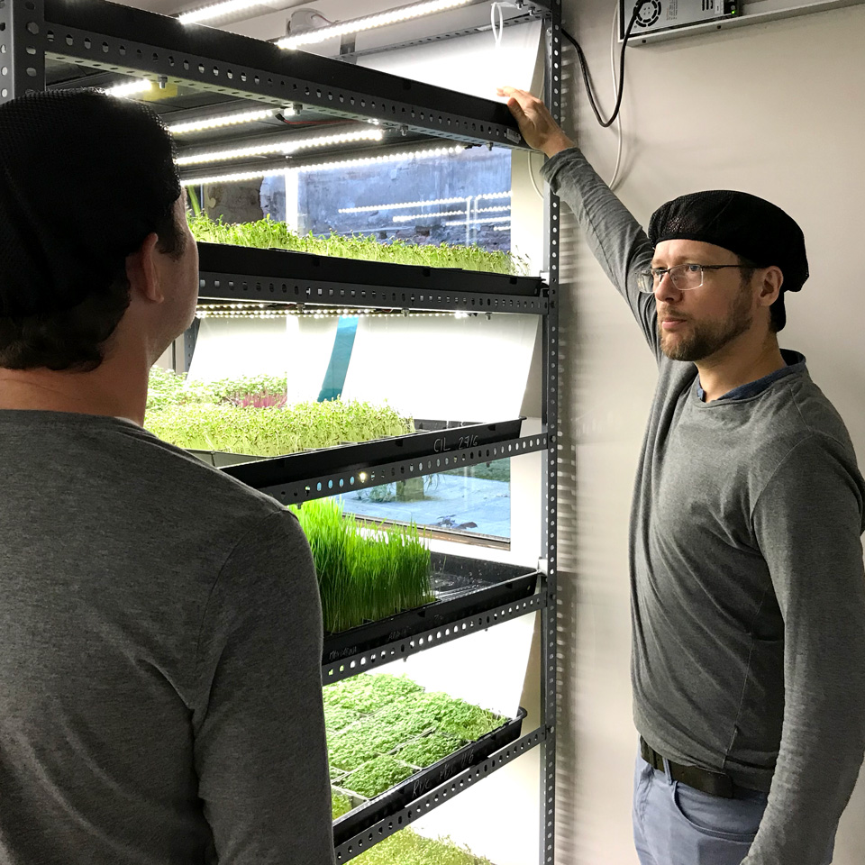 Training and explaining how the cos-effective cultivation system works